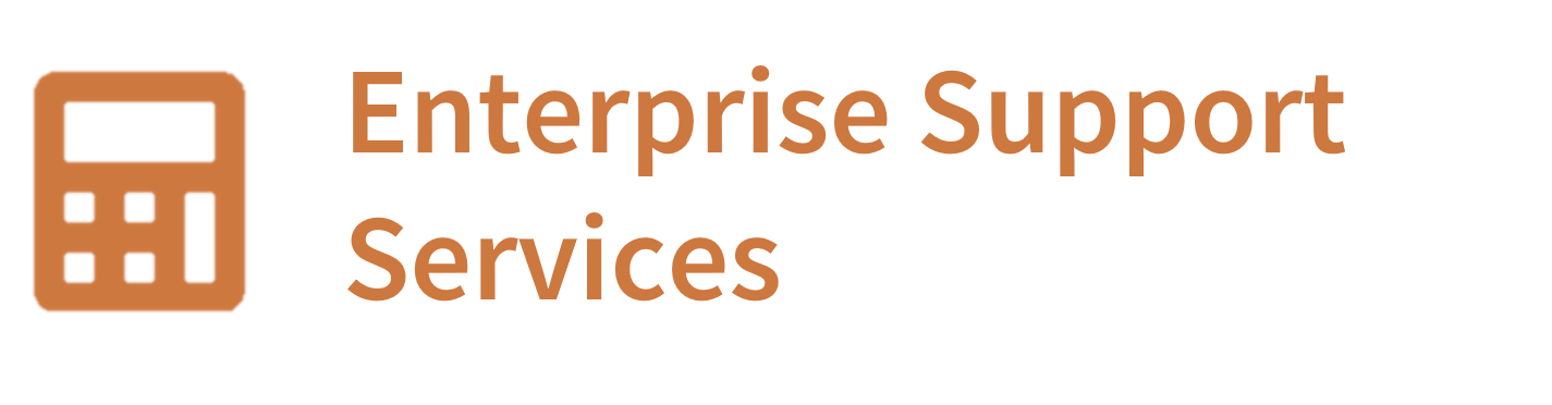 Enterprise Support Services